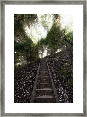 Stairway To Heaven Framed Print by Ricky Barnard