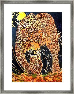 Stalking Leopard Framed Print by Mike Holder