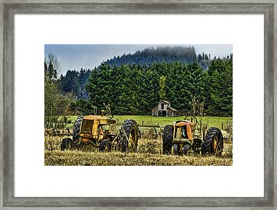 Standing By Framed Print by Dale Stillman