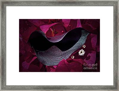 Standing Out Framed Print by Gwyn Newcombe