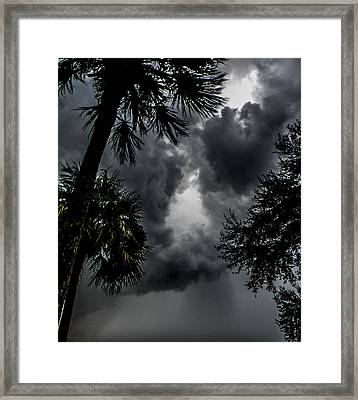Standing Through The Storm Framed Print by Christy Usilton