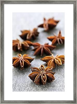 Star Anise Fruit And Seeds Framed Print by Elena Elisseeva