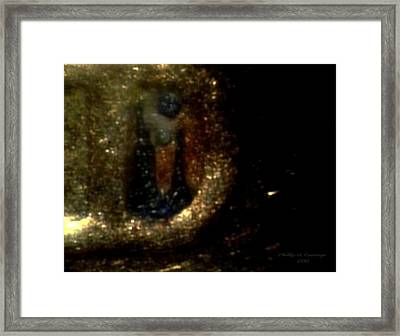 Statue Of Liberty Penny Letter D Mint Mark Photo 9 Framed Print by Phillip H George