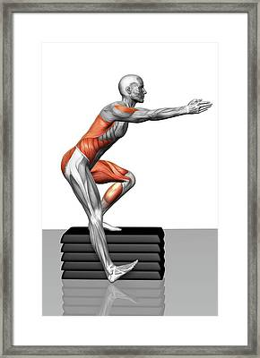 Step-down Exercises Framed Print by MedicalRF.com