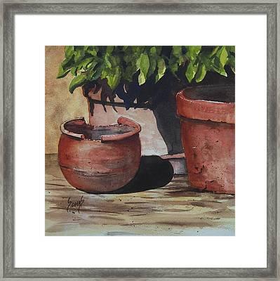 Stephanie's Pots Framed Print by Sam Sidders