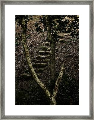 Steps Framed Print by Odd Jeppesen