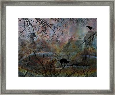 Still In There Framed Print by Shirley Sirois