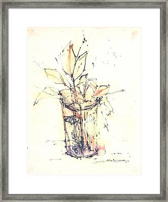Still Life Framed Print by Chiong Lin