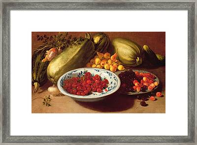 Still Life Of Cherries - Marrows And Pears Framed Print by Italian School