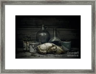 Still Life With Bear Skull Framed Print by Priska Wettstein