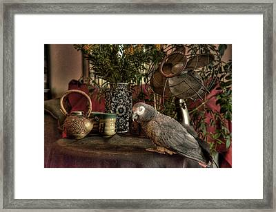 Still Life With Rosie Framed Print by William Fields