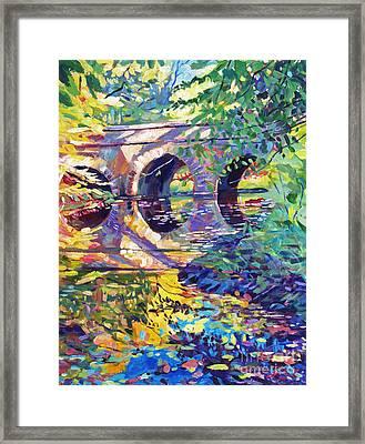 Stone Footbridge Framed Print by David Lloyd Glover