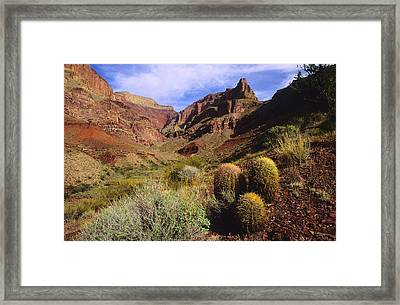 Stonecreek Canyon In The Grand Canyon Framed Print by David Edwards