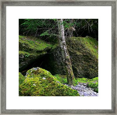 Stonescape I Framed Print by Michael Wyatt