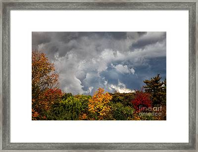 Storms Coming Framed Print by Ronald Lutz
