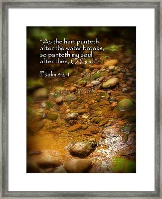 Stream Bed Psalm 42 Framed Print by Cindy Wright