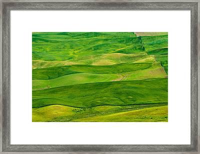Stripes Framed Print by Dan Mihai