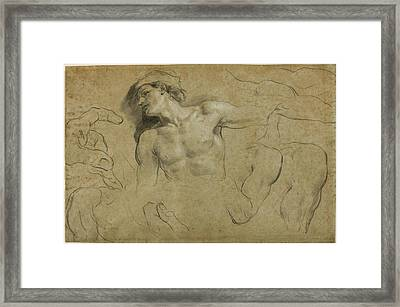 Studies Of Hands - Shoulders And A Leg Framed Print by Carlo Cignani