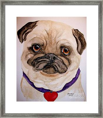 Studley Has A Heart Framed Print by Carol Grimes