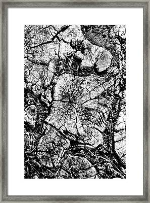 Stumped Framed Print by Mike McGlothlen