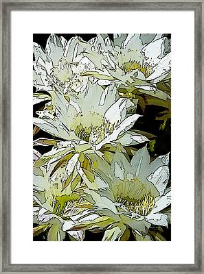 Stylized Cactus Flowers Framed Print by Phyllis Denton
