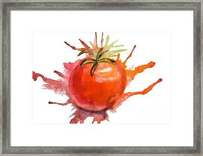 Stylized Illustration Of Tomato Framed Print by Regina Jershova