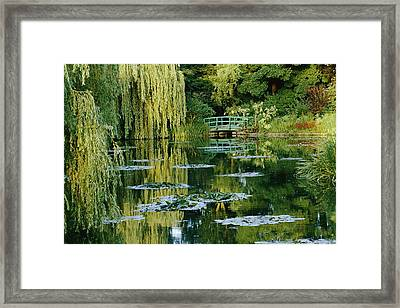 Subtle Light And Shade Reveal Framed Print by Farrell Grehan