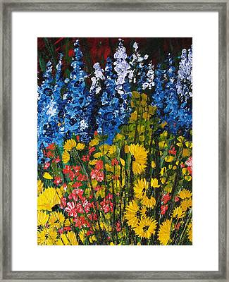 Summer Colours Framed Print by Shilpi Singh