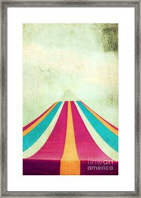 Summer Fun II Framed Print by Darren Fisher