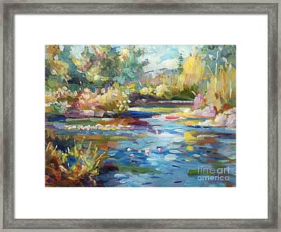 Summer Pond Framed Print by David Lloyd Glover