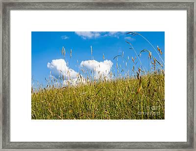 Summer Serenity Framed Print by Thomas R Fletcher