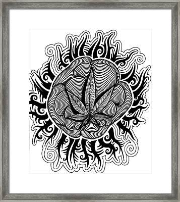 sun Framed Print by Andrew Padula