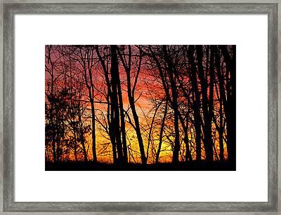 Sun Set Of Fire Framed Print by LeeAnn McLaneGoetz McLaneGoetzStudioLLCcom