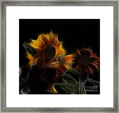 Sunflower Floral  Framed Print by Marjorie Imbeau