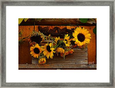 Sunflower Mixed Media 2 Framed Print by Marjorie Imbeau