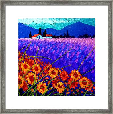 Sunflower Vista Framed Print by John  Nolan