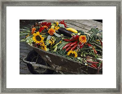 Sunflowers, Dahlias, Eggplants, Pepper Framed Print by Jonathan Blair