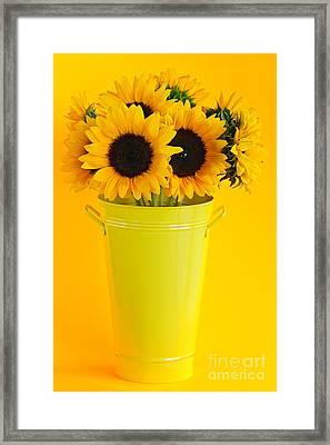 Sunflowers In Vase Framed Print by Elena Elisseeva