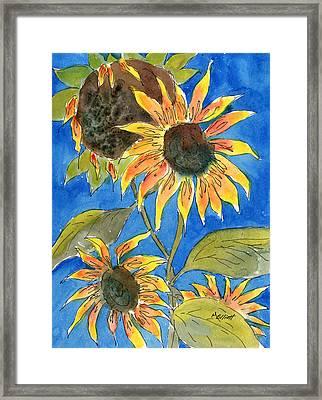 Sunflowers Framed Print by Marsha Elliott