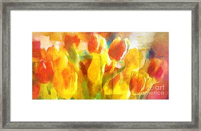 Sunny Tulips Framed Print by Lutz Baar