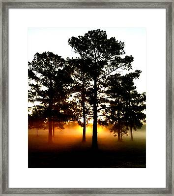 Sunrise3 Framed Print by Amber Stubbs