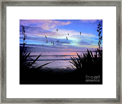 Sunset Down Under Framed Print by Karen Lewis