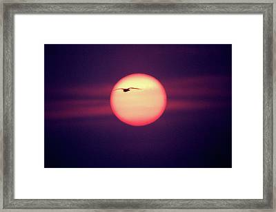 Sunset Framed Print by John Foxx