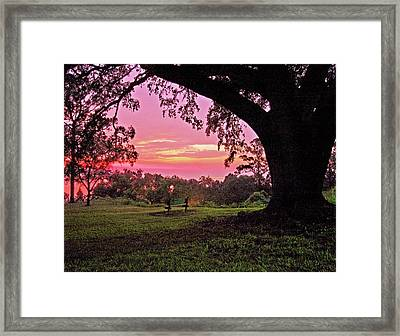 Sunset On The Bench Framed Print by Michael Thomas