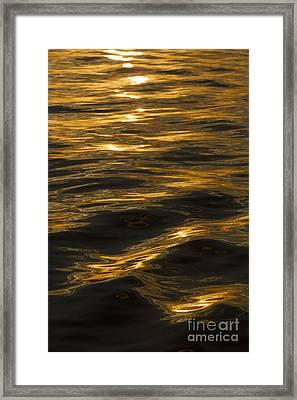 Sunset Reflections Framed Print by Dustin K Ryan