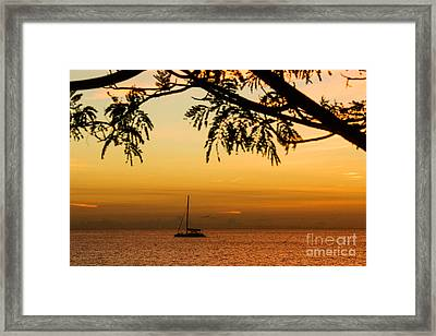 Sunset Sail Framed Print by Rene Triay Photography