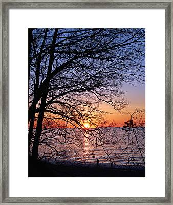 Sunset Silhouette 1 Framed Print by Peter Chilelli