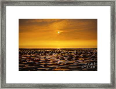 Sunset Walk Framed Print by Silvio Schoisswohl