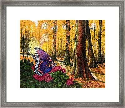 Sunshine Traveler-red Spotted Purple Framed Print by Michael Frank