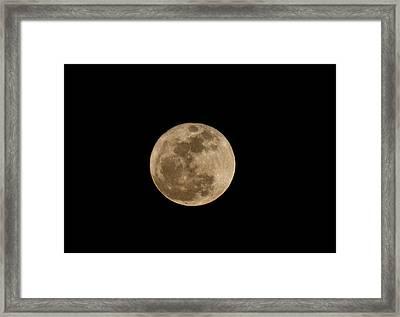 Super Moon 2011 Framed Print by Lara Ellis